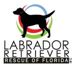 Labrador Retriever Rescue of Florida (LRRoF), Inc.