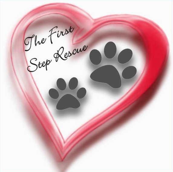The First Step Rescue