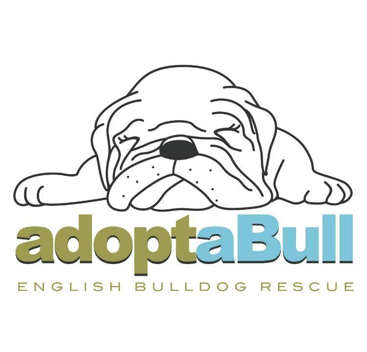 adoptaBull English Bulldog Rescue