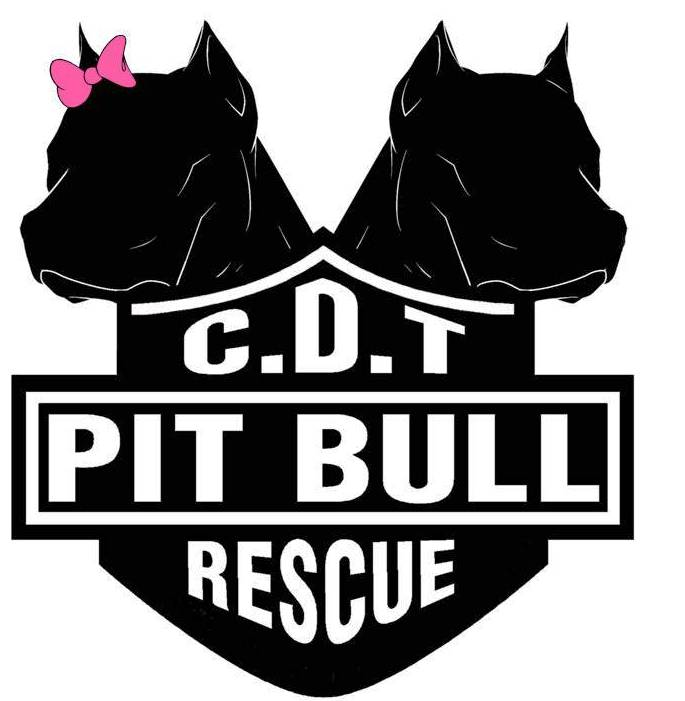 casa del toro pit bull rescue petfindercom