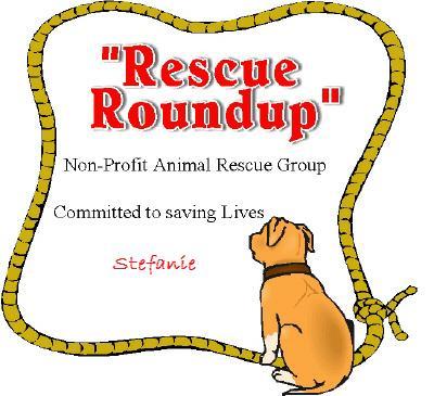 Rescue Roundup