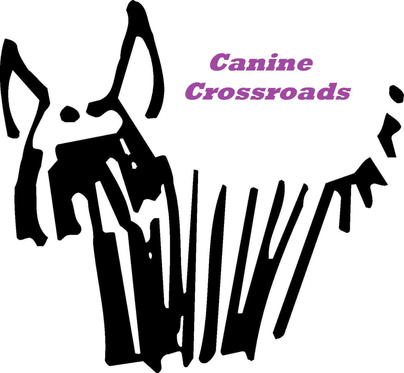 Canine Crossroads