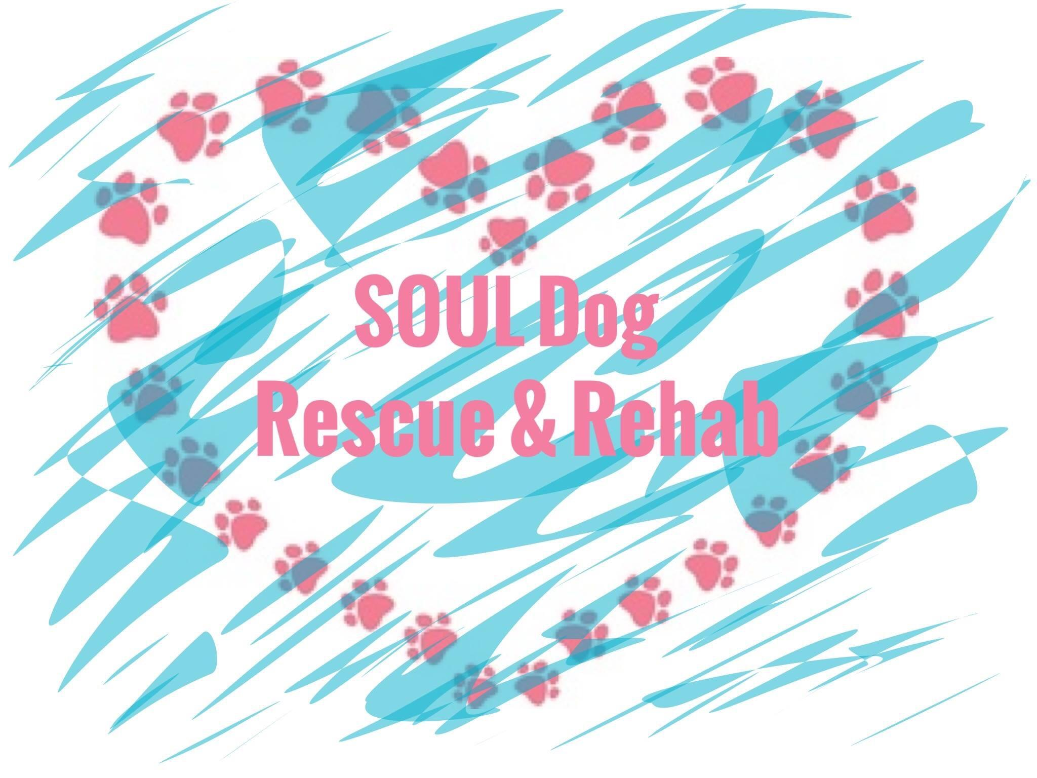 SOUL Dog Rescue and Rehab