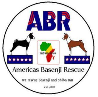 Americas Basenji and Shiba Inu Rescue Inc.