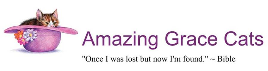 Amazing Grace Cats, Inc.