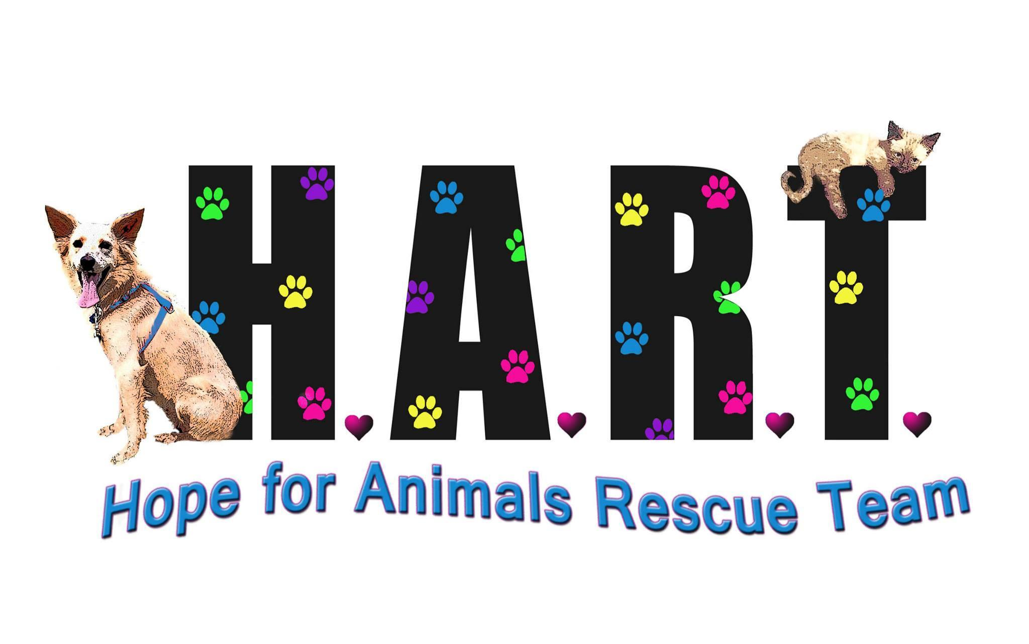 Hope for Animals Rescue Team