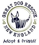 Great Dog Rescue New England