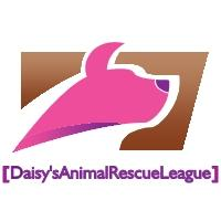 Daisy's Animal Rescue League