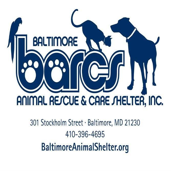 Baltimore Animal Rescue & Care Shelter