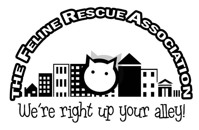 The Feline Rescue Association