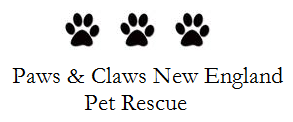 Paws and Claws New England