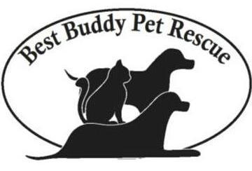 Best Buddy Pet Rescue