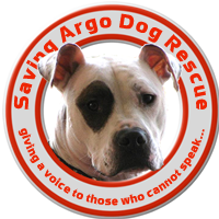 Saving Argo Dog Rescue