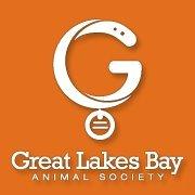 Great Lakes Bay Animal Society