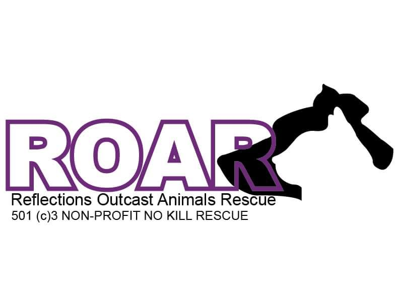 ROAR- Reflections Outcast Animal Rescue