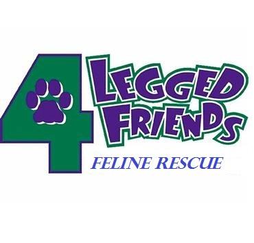 Kit Kat Club Rescue formerly 4 Legged Friends Feline Rescue