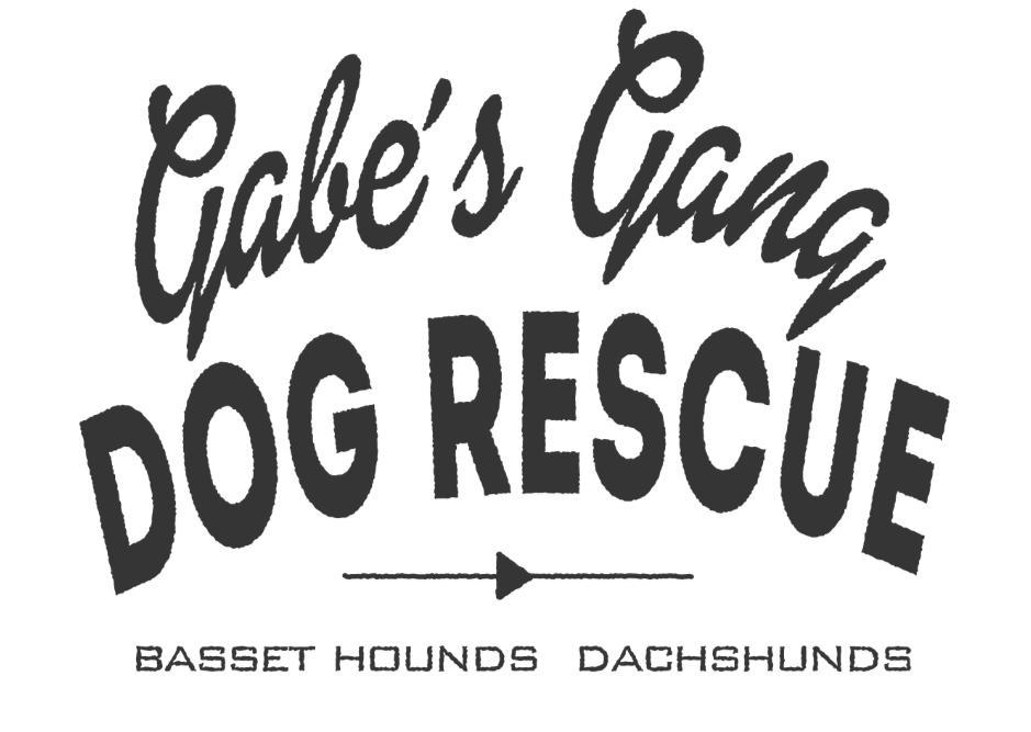 Gabe's Gang Hound Dog Rescue