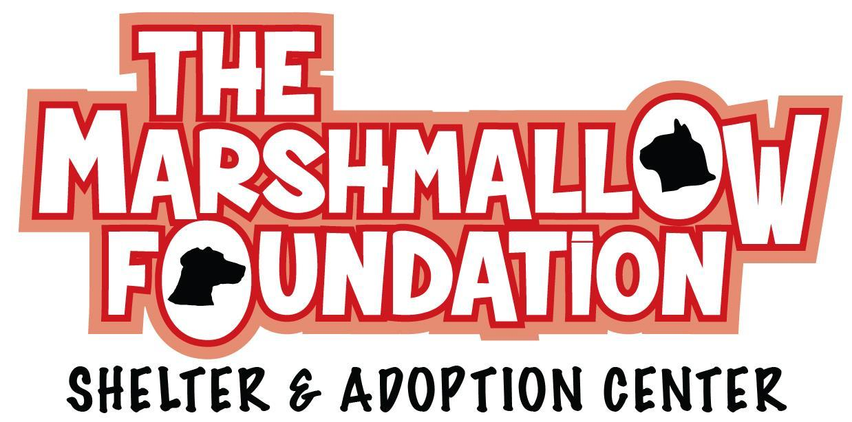The Marshmallow Foundation