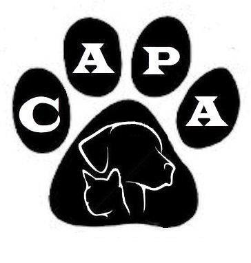 Community Animal Protection Association(C.A.P.A.)