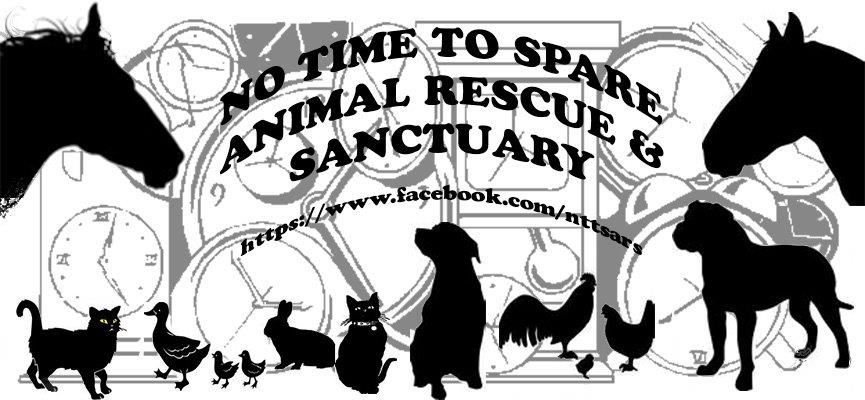 No Time To Spare Animal Rescue and Sanctuary