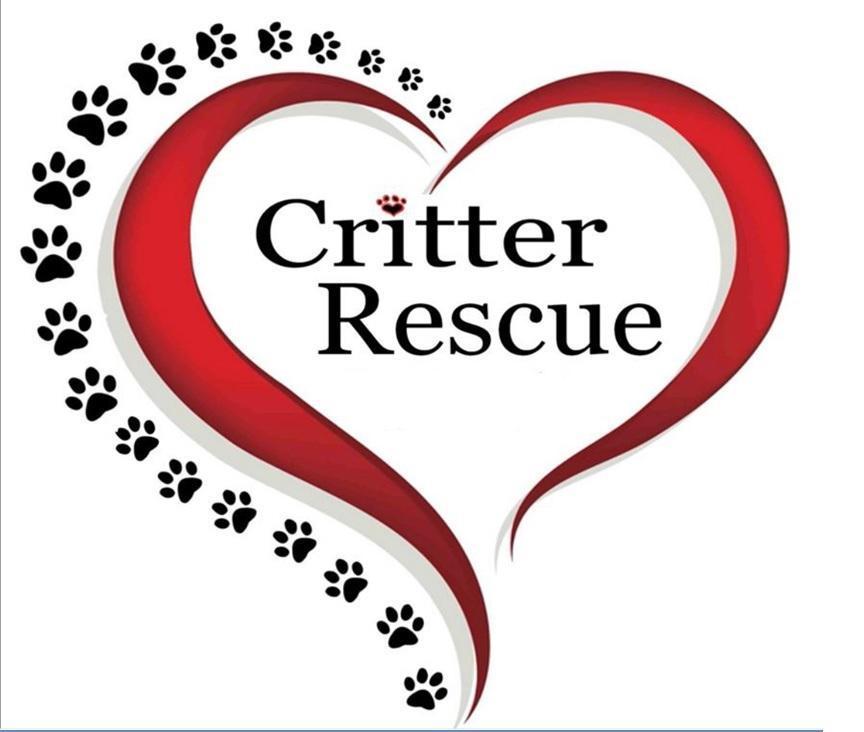 Critter Rescue