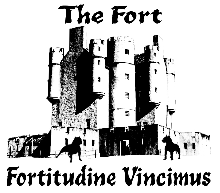 The Fort - Fortitudine Vincimus Rescue Center