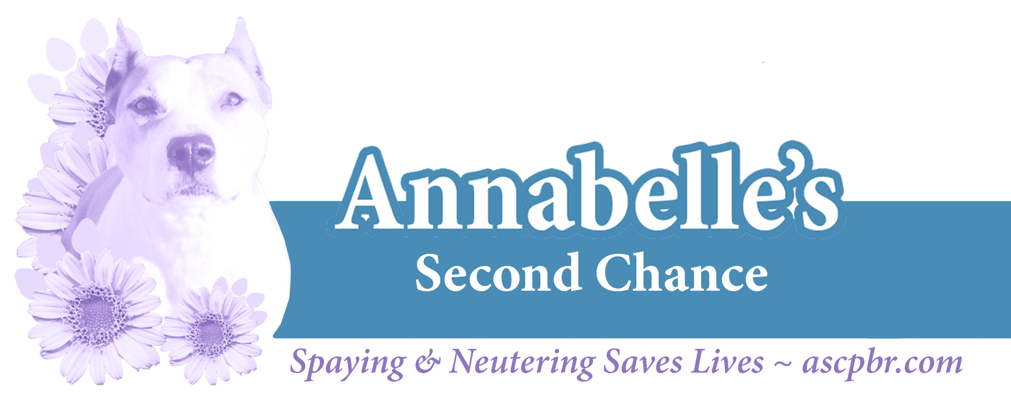 Annabelle's Second Chance