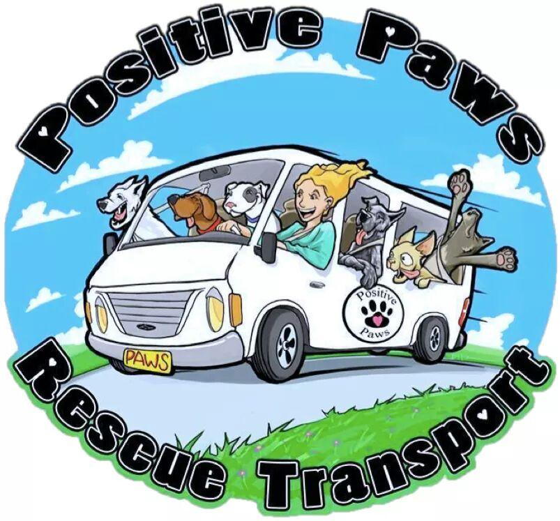 Positive Paws Rescue Transport