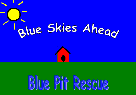 Blue Skies Ahead Blue Pit Rescue
