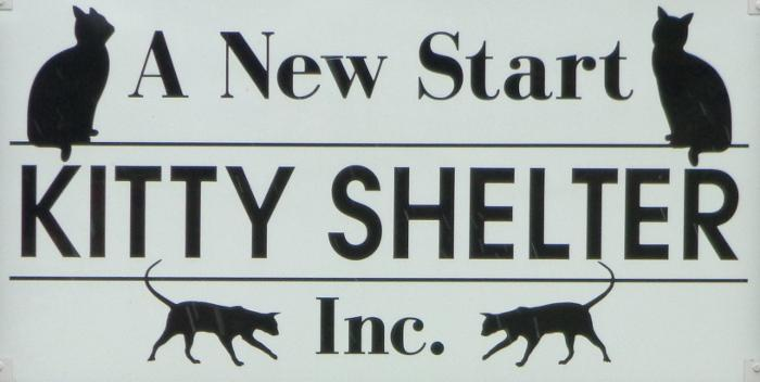 A New Start Kitty Shelter