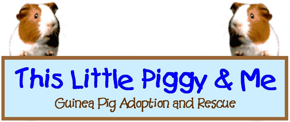 This Little Piggy & Me Adoption and Rescue
