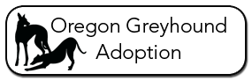Oregon Greyhound Adoption