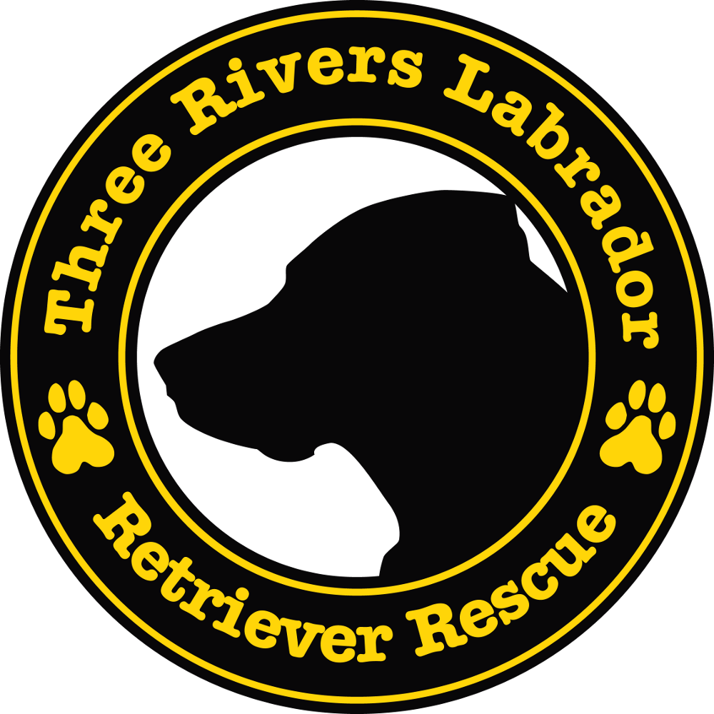 Three Rivers Labrador Retriever Rescue