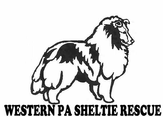 Western PA Sheltie Rescue