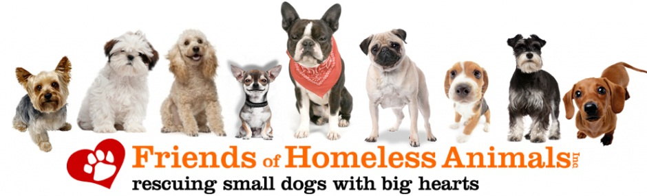 Friends of Homeless Animals, Inc.