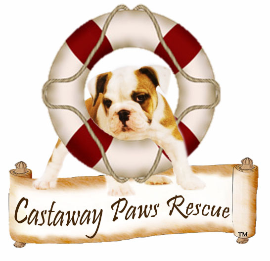 Castaway Paws Rescue