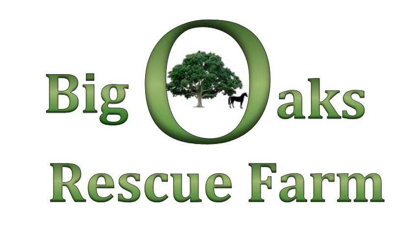 Big Oaks Rescue Farm