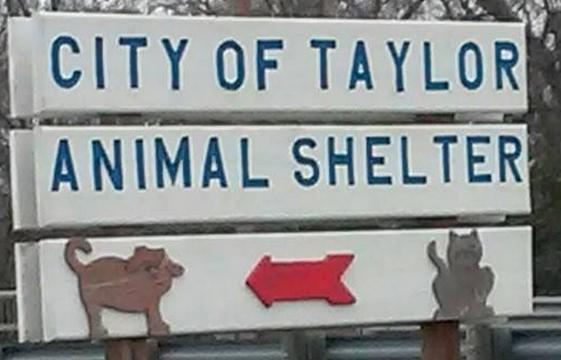 Taylor Animal Shelter