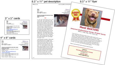 print adoption materials petfinder members
