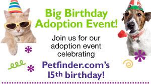 Petfinder Big Birthday Adoption Event