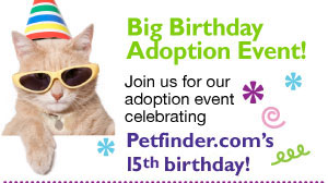 Petfinder Big Birthday Adoption Event at Wildrun