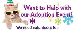 Want to Help with our Adoption Event?