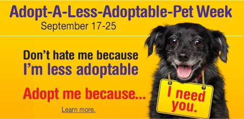help spread the word to find homes for these special pets