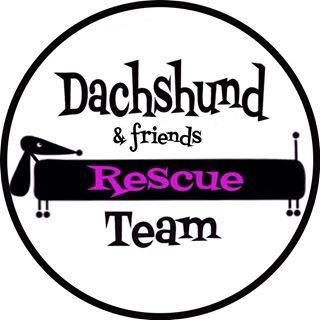 Dachshund Rescue Team
