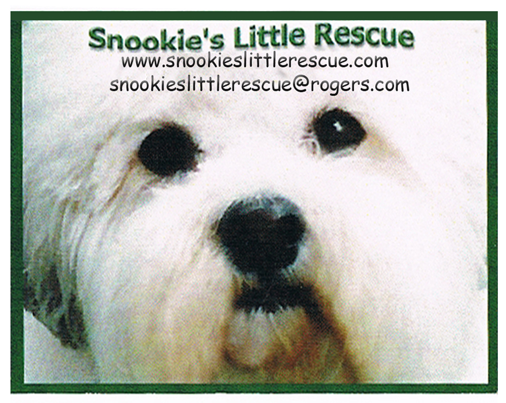 Snookie's Little Rescue Society