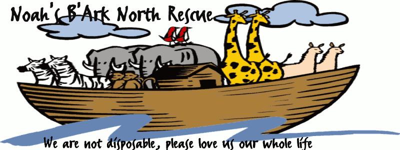 north pet rescue rohnert park ca 94928 us www petfinder com shelters
