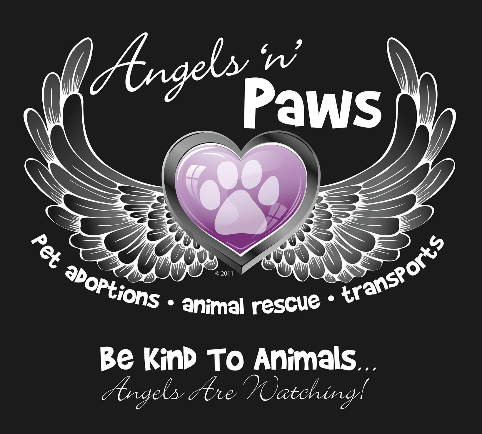 Angels N Paws