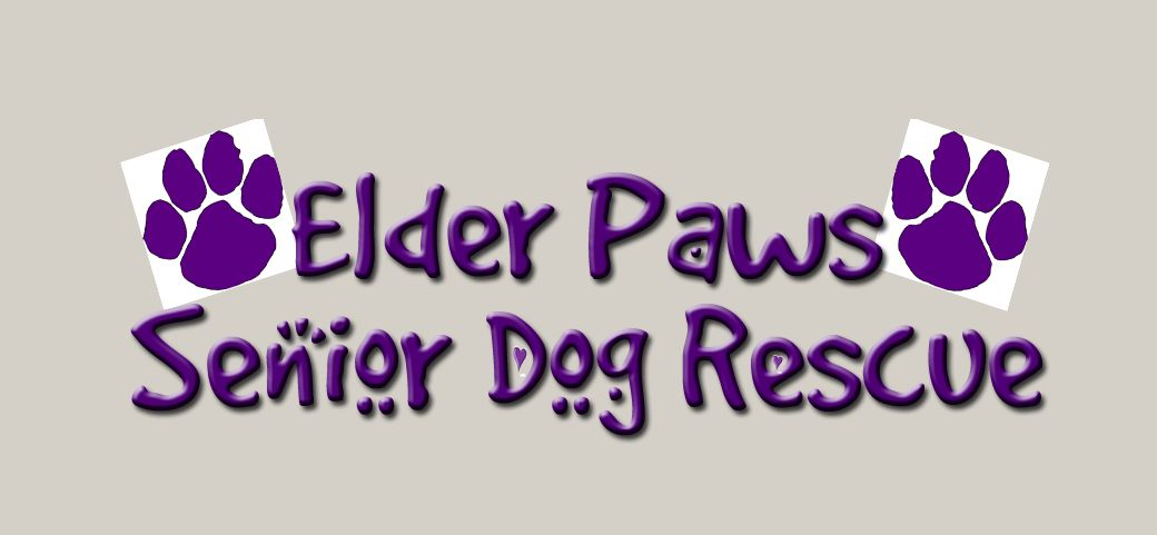 Elder Paws Senior Dog Rescue