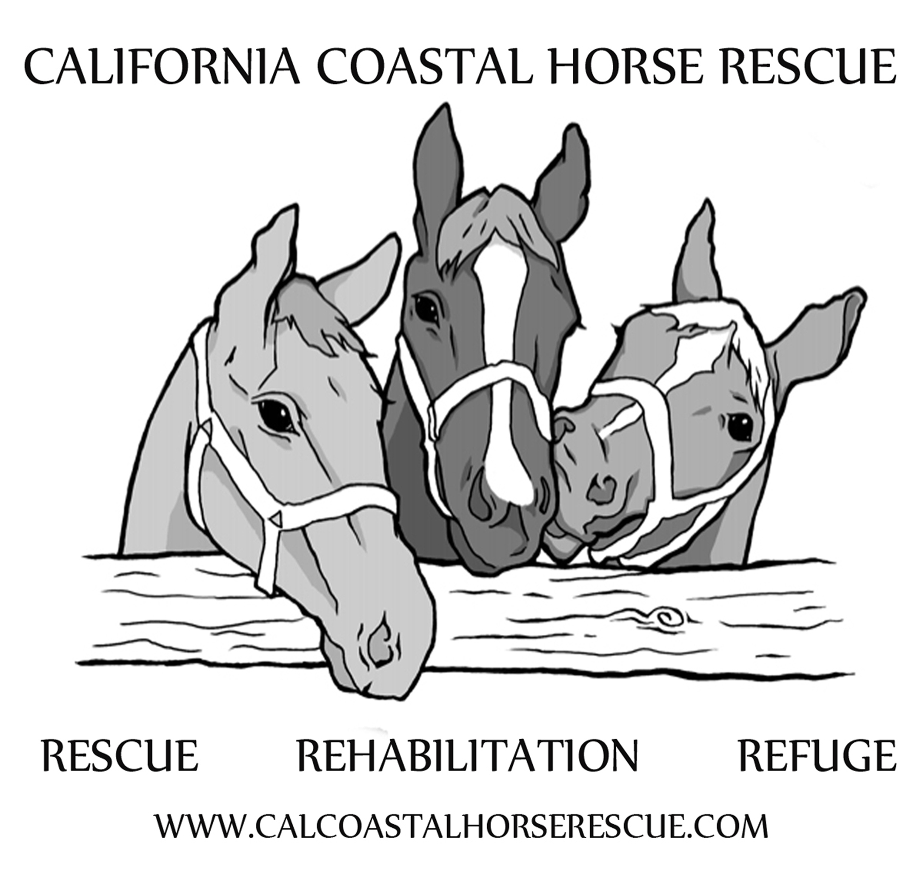 California Coastal Horse Rescue