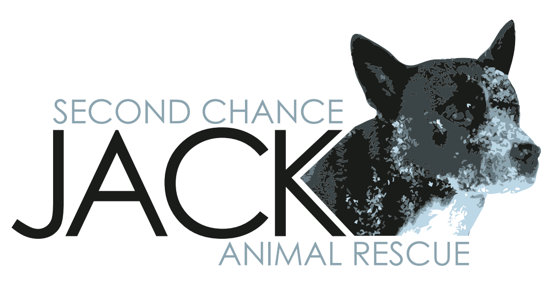 Second Chance Jack Animal Rescue